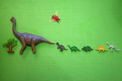 Dinosaur toys, from large to small, arranged in order, and a small palm tree, flat on a green background, children like it. This photograph shows the kind and Royalty Free Stock Photo