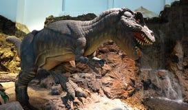 Dinosaur Trex Stock Photography