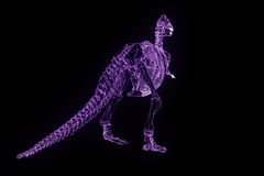 Dinosaur TRex Skeleton in Hologram Wireframe Style. Nice 3D Rendering Royalty Free Stock Images
