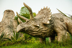 Dinosaur. (Triceratop) in the forest Royalty Free Stock Photos