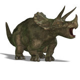 Dinosaur Triceratops. 3D render with clipping path and shadow over white Royalty Free Stock Images