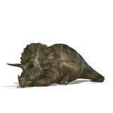 Dinosaur Triceratops. 3D render with clipping path and shadow over white vector illustration