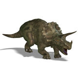 Dinosaur Triceratops. 3D render with clipping path and shadow over white Stock Photography