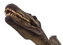 Dinosaur tyrannosaurus Stock Image
