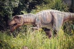 Dinosaur Tyrannosaurus Rex. In forest Stock Photography