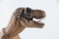 Dinosaur Royalty Free Stock Photo