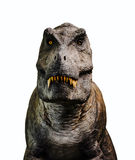 Dinosaur. Tyrannosaurus Rex dinosaur, photorealistic representation on white background royalty free stock images