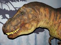 Dinosaur Tyrannosaurus Rex, T-Rex, huge head. Dinosaur Tyrannosaurus Rex, T-Rex royalty free stock image