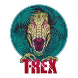 Dinosaur tyrannosaurus roaring head on tropical leaves Stock Photos