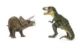 Dinosaur Tyrannosaurus and Triceratops. Battle of dinosaurs of Cretaceous. Shooting Hunt and Roaring of TyrannosaurusT-rex With threat and self defense of Stock Images