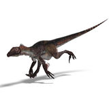 Dinosaur Utahraptor Royalty Free Stock Images