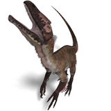 Dinosaur Utahraptor. 3D render with clipping path and shadow over white vector illustration