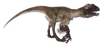 Dinosaur Utahraptor Royalty Free Stock Photography