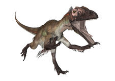 Dinosaur Utahraptor Royalty Free Stock Photos