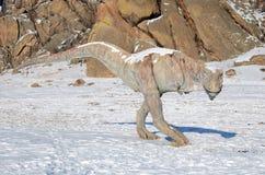 Dinosaur Valley  in Terelj National Park. Mongolia Stock Image