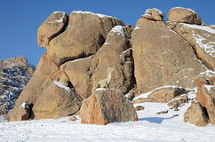 Dinosaur Valley  in Terelj National Park. Mongolia Royalty Free Stock Photo