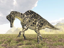 Dinosaur Velafrons Stock Photography