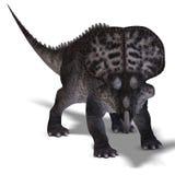 Dinosaur Zuniceratops Stock Photo