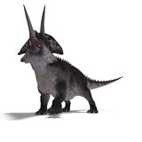 Dinosaur Zuniceratops. 3D render with clipping path and shadow over white Royalty Free Stock Photos