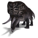Dinosaur Zuniceratops Royalty Free Stock Photo
