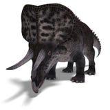 Dinosaur Zuniceratops Royalty Free Stock Photo
