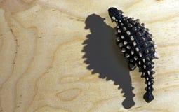 Dinosaura ankylosaurus zabawka i swój cień Obrazy Royalty Free