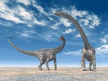 dinosaura diplodokus Obrazy Stock