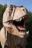 dinosaura gada rex tyrannosaurus Zdjęcia Royalty Free