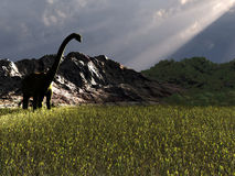 dinosaura jedzenia patrzeć Zdjęcia Royalty Free