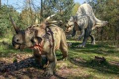 Dinosaura polowanie dla jedzenia Zdjęcie Royalty Free