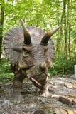 dinosaura triceratops Fotografia Royalty Free