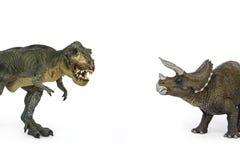 Dinosaura Triceratops i Tyrannosaurus fotografia stock