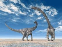 dinosaurdiplodocus Arkivbilder