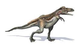 Dinosaure d'Alioramus Images stock