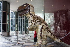 Dinosaure de Brown Photo stock
