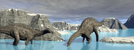 Dinosaure de deux dicraeosaurus Photos libres de droits