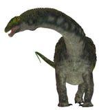 Dinosaure de Diamantinasaurus sur le blanc illustration libre de droits