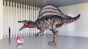 Dinosaure Spinosaurus dans le zoo Photos libres de droits