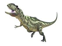 Dinosaure Yangchuanosaurus Photographie stock libre de droits