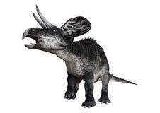 dinosaure Zuniceratops du rendu 3D sur le blanc Image libre de droits