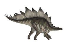 dinosauren för clippingen 3d över banan framför skuggastegosaurusen vit Royaltyfri Foto