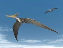 Dinosaures de Pteranodon volant - 3D rendent Images libres de droits