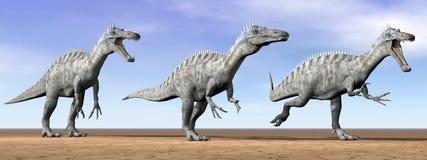 Dinosaures de Suchomimus dans le désert - 3D rendent Photo stock
