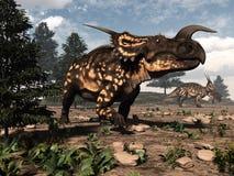 Dinosauri del Einiosaurus nel deserto - 3D rendono Immagine Stock
