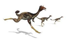 Dinosauri di Mononykus sull'esecuzione illustrazione vettoriale