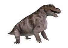 dinosaurie Keratocephalus för tolkning 3D på vit Royaltyfri Bild