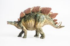 Dinosaurie Stegosaurus på vit bakgrund royaltyfria bilder