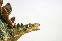 Dinosaurie Stegosaurus på vit bakgrund arkivfoto