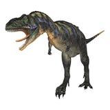 DinosaurieAucasaurus royaltyfri illustrationer