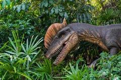 Dinosaurier är slocknade i natur Lura på betet arkivbilder